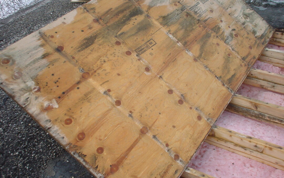Don't Forget The Vent: What You Need To Know About Roof Damage, Condensation, And Ventilation